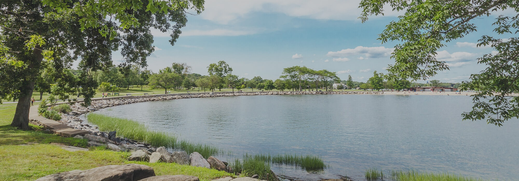 View overlooking lake circled by grass, trees, and rocks